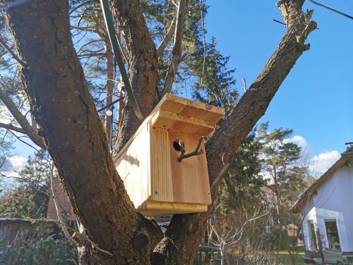 Flahdach beim Vogelhaus