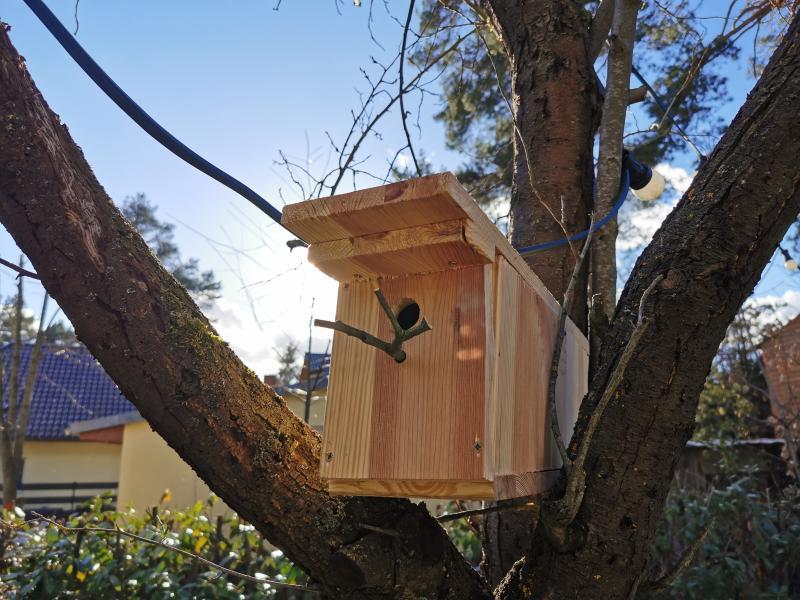 unser selbstgebautes Vogelhaus / Nistkasten