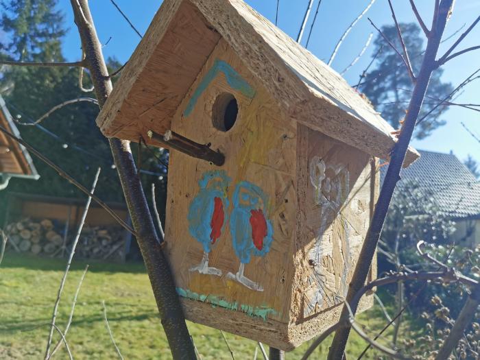 Wie groß muss das Vogelloch für Meisen sein?
